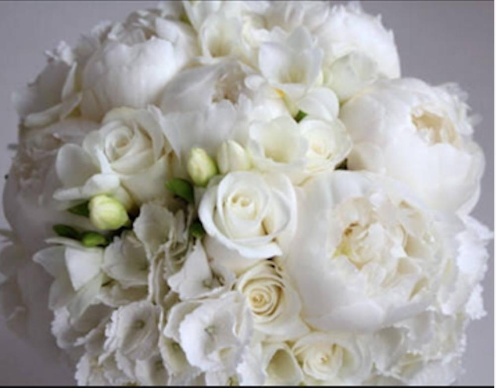 Ranunculus & Roses.png