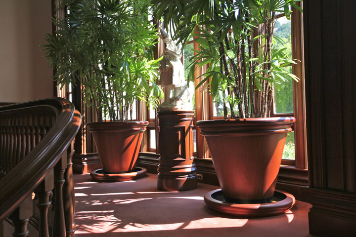 Mahogany vases and pedestal on-site.