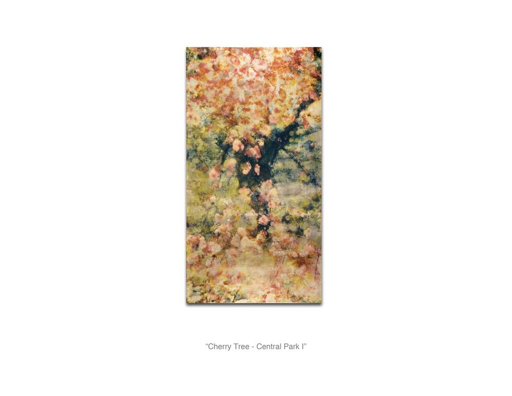 Cherry Tree - Central Park I_WebReady.jpg