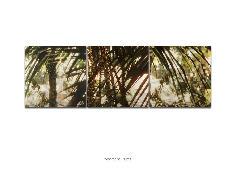Montecito Palms_Web.jpg
