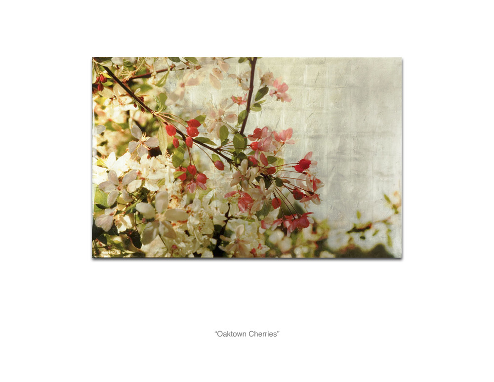 Oaktown Cherries_Web.jpg