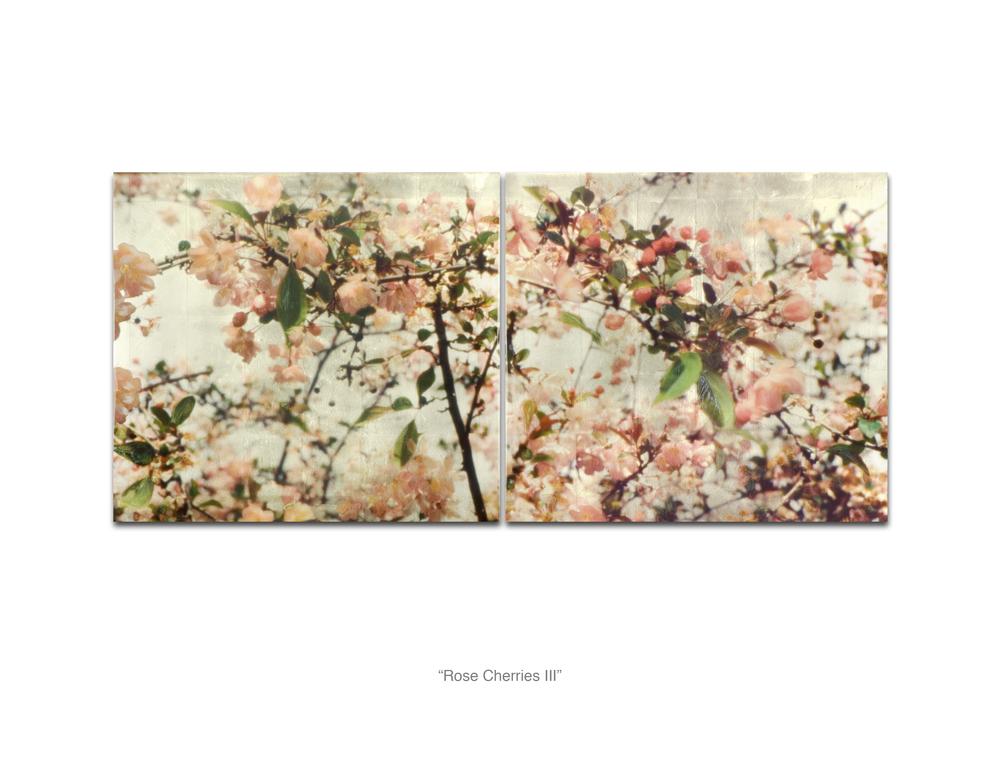Rose Cherries III_Web.jpg