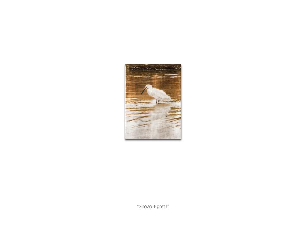 Snowy Egret I_WebReady.jpg