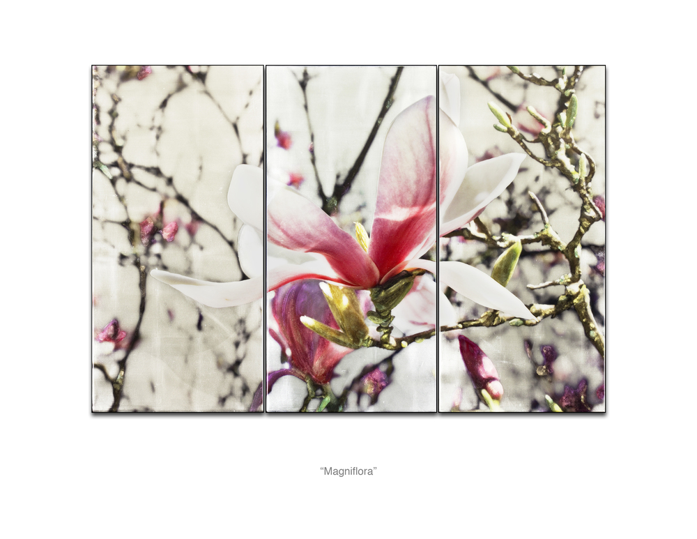 Magniflora_Web.jpg