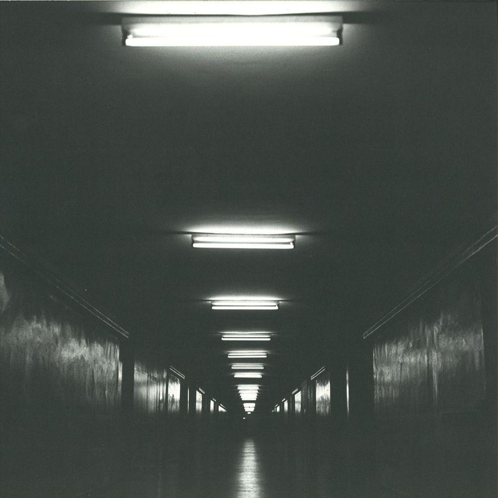 197474.jpg