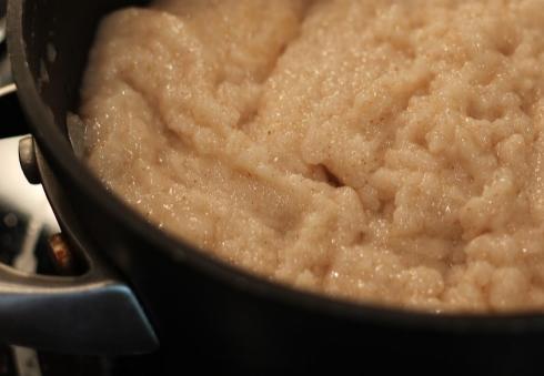 faux oatmeal.jpg