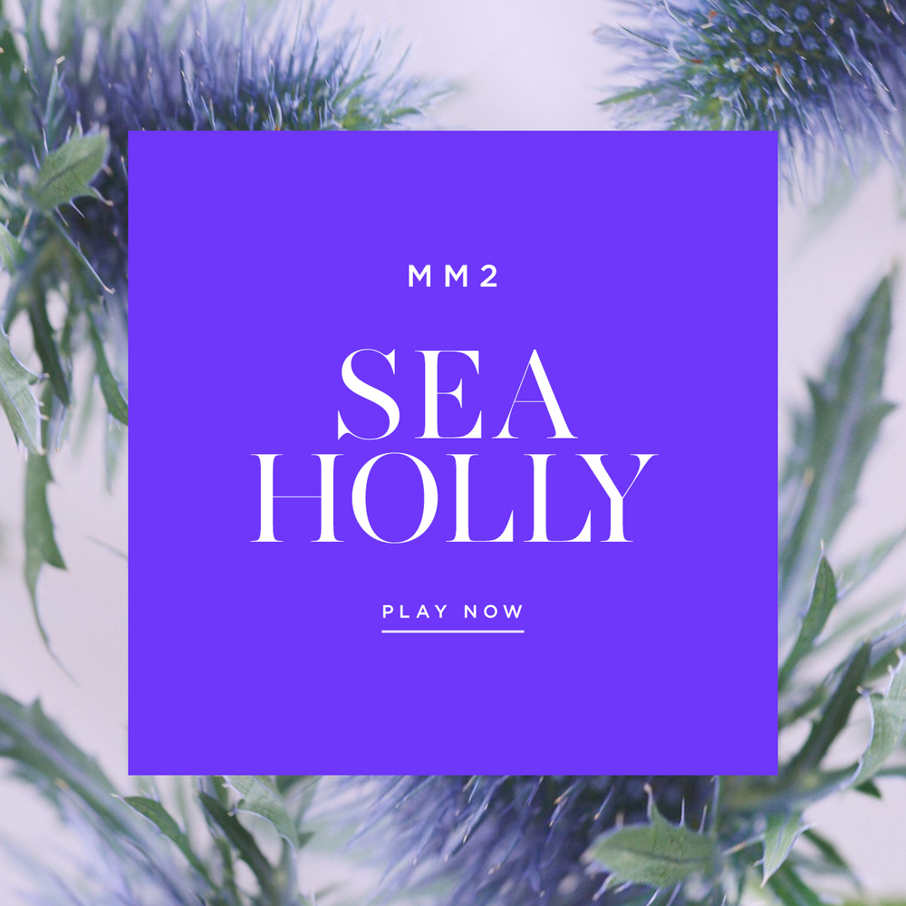 Flower-Playlist-Sea-Holly-Maison-Mittweg-Music