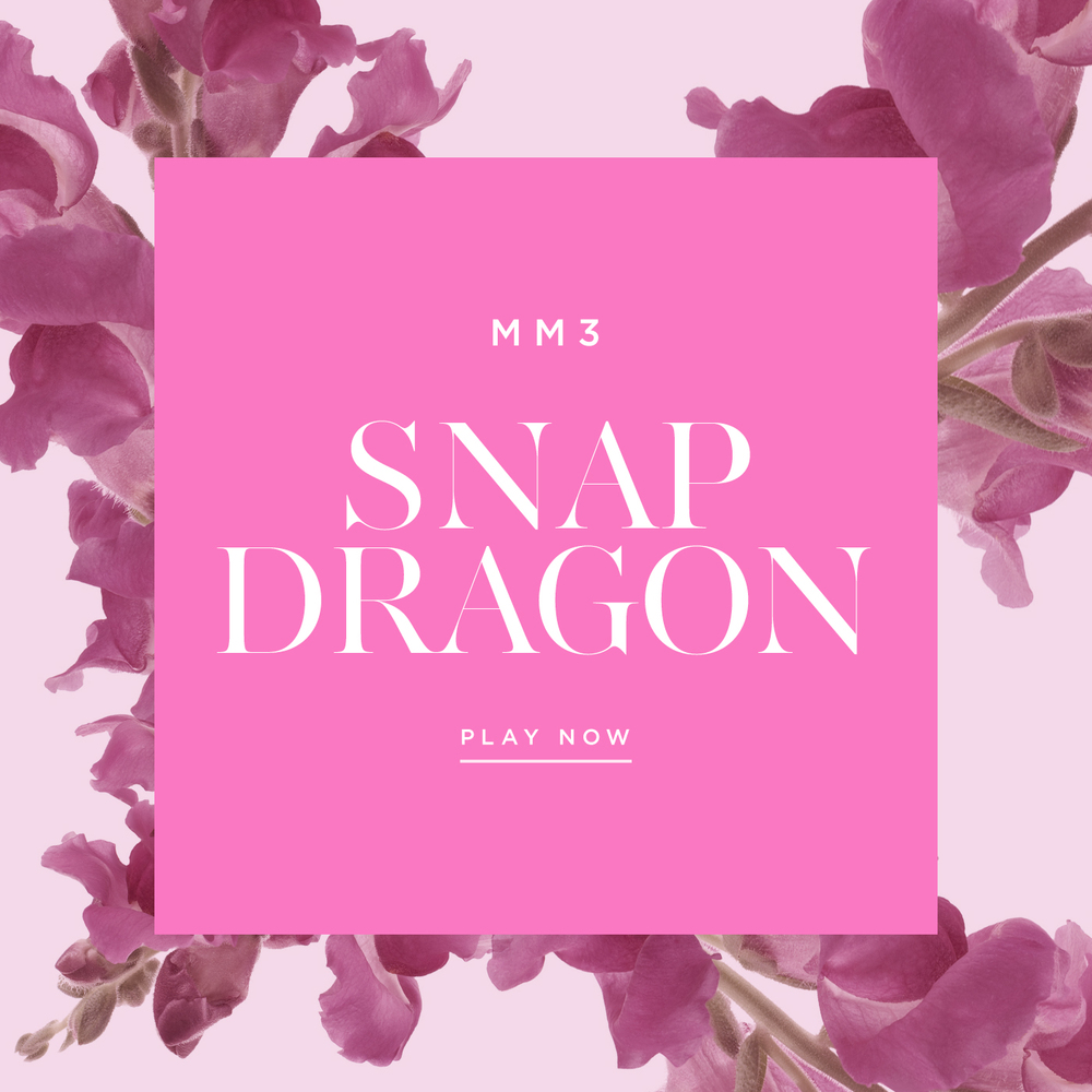 Flower-Playlist-Snap-Dragon-Maison-Mittweg-Music