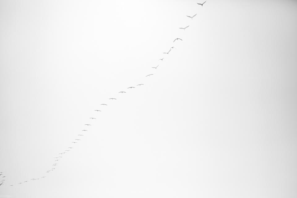 Bérangère profil-1.jpg