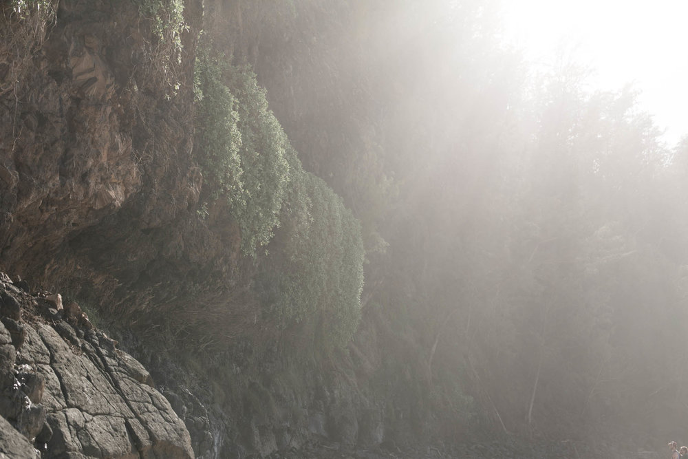 Emilie-Bergeron-Kauai-1-9.jpg