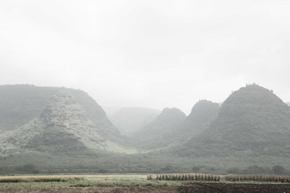 Emilie-Bergeron-Kauai-1-13.jpg
