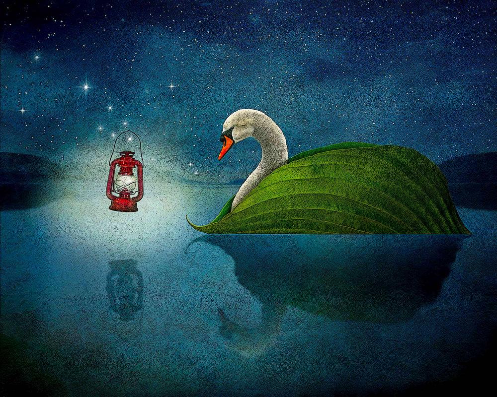 A Swan's Song.jpg