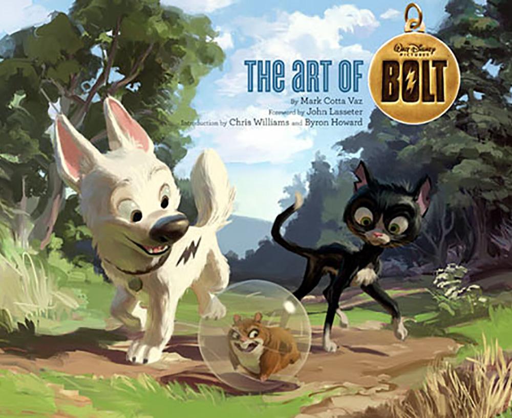 01_Bolt_cover.jpg