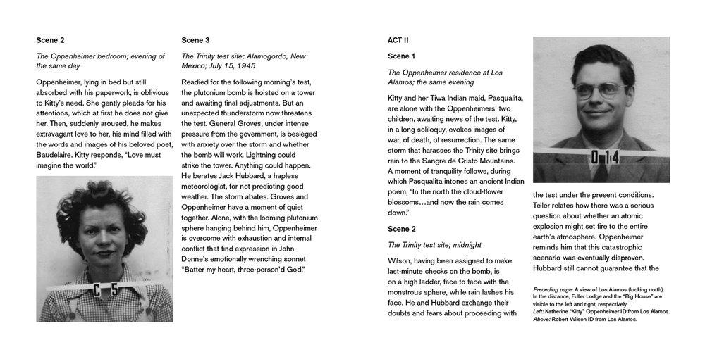 JA_DrAtomic_Booklet_PG16-17.jpg