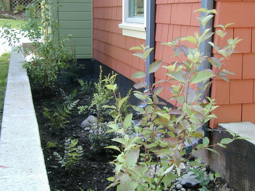 building rear stormwater management system