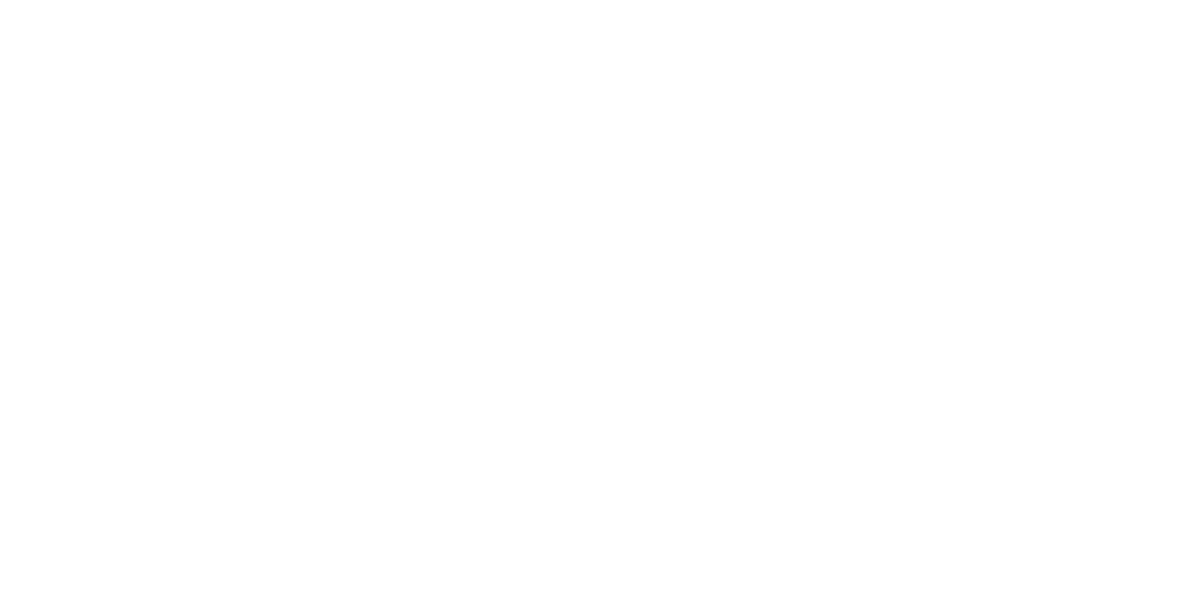 Dallas Dog Training: Duke Canine