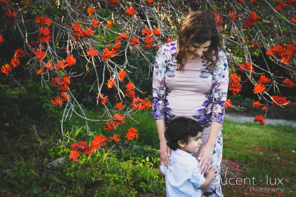 Maternity_Photography_Baltimore_DC_Lancaster_Photographer-117.jpg