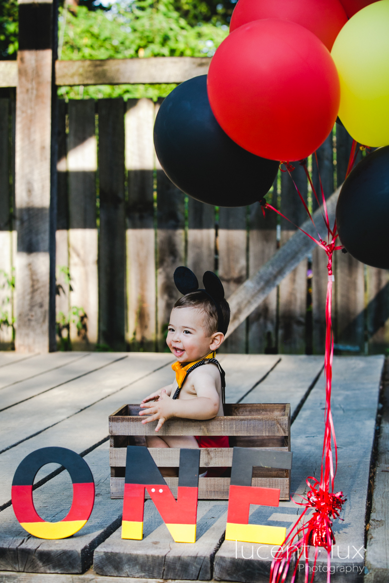 Smash_Cake_Baby_Photography_Maryland_DC_Baltimore_Jerusalem_Mill_State_Park_Portraits-106.jpg