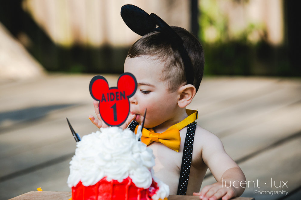 Smash_Cake_Baby_Photography_Maryland_DC_Baltimore_Jerusalem_Mill_State_Park_Portraits-214.jpg