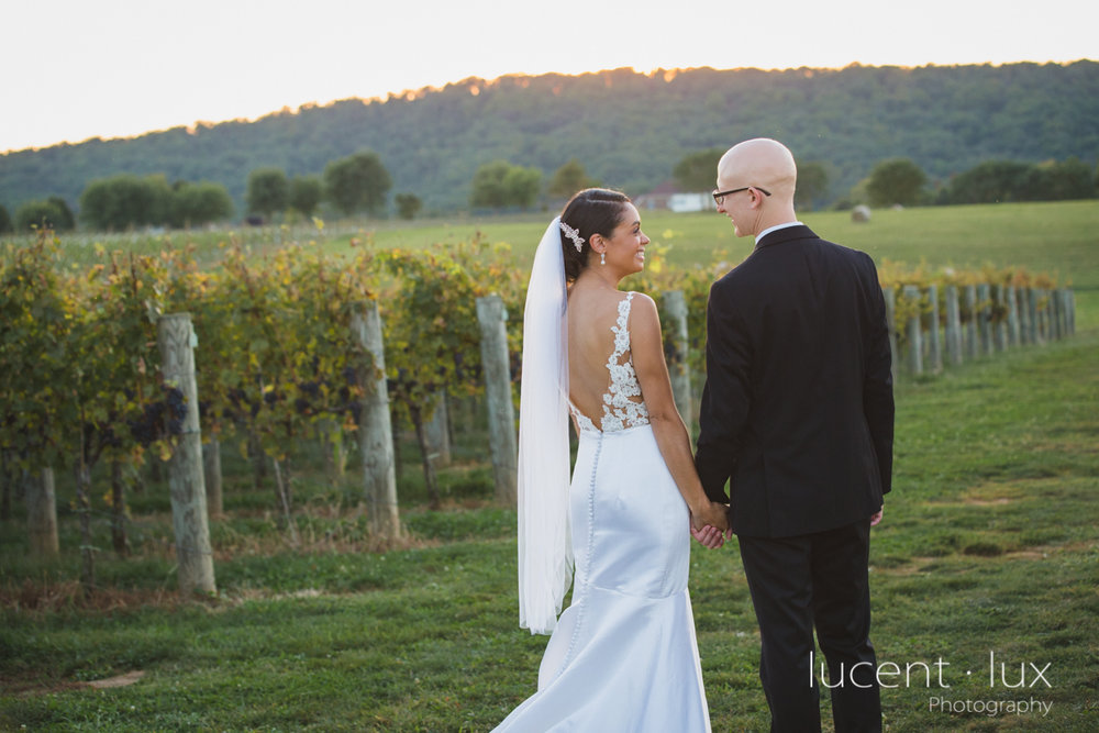Maryland_Wedding_Photographer_Big_Cork_Vineyards_Wedding_Pennsylvania_Photography-266.jpg