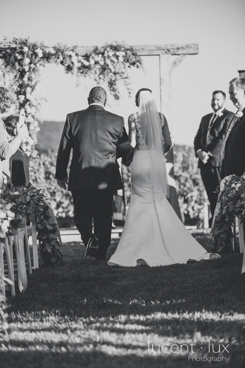 Maryland_Wedding_Photographer_Big_Cork_Vineyards_Wedding_Pennsylvania_Photography-110.jpg