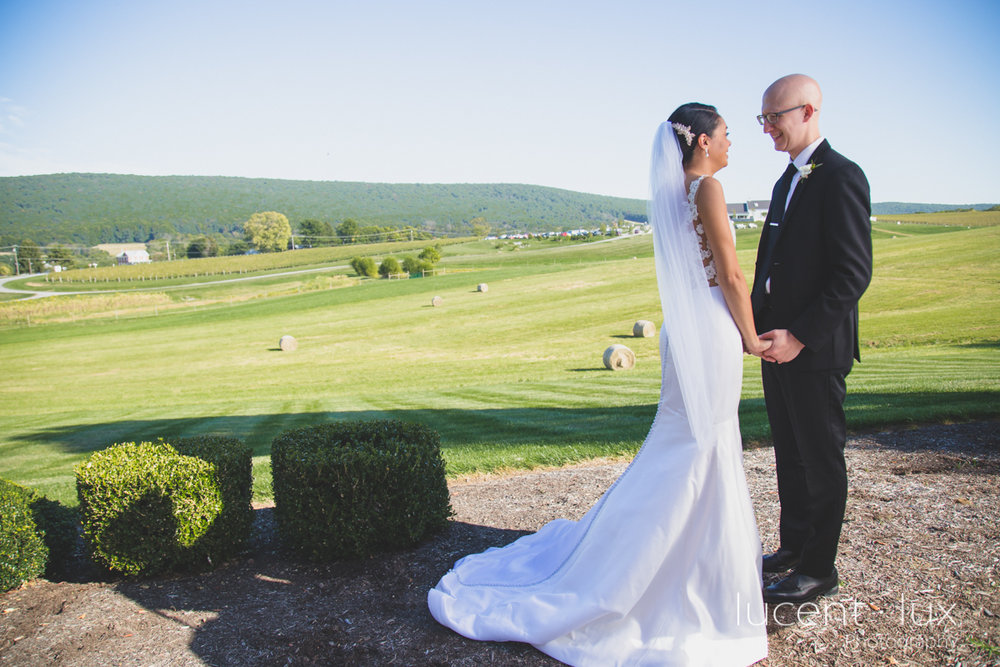Maryland_Wedding_Photographer_Big_Cork_Vineyards_Wedding_Pennsylvania_Photography-224.jpg