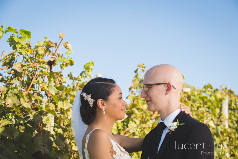 Maryland_Wedding_Photographer_Big_Cork_Vineyards_Wedding_Pennsylvania_Photography-230.jpg