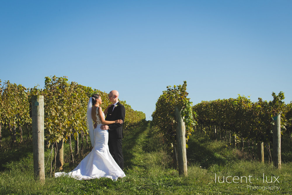 Maryland_Wedding_Photographer_Big_Cork_Vineyards_Wedding_Pennsylvania_Photography-231.jpg
