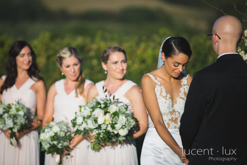 Maryland_Wedding_Photographer_Big_Cork_Vineyards_Wedding_Pennsylvania_Photography-238.jpg