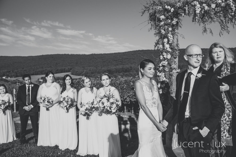 Maryland_Wedding_Photographer_Big_Cork_Vineyards_Wedding_Pennsylvania_Photography-245.jpg