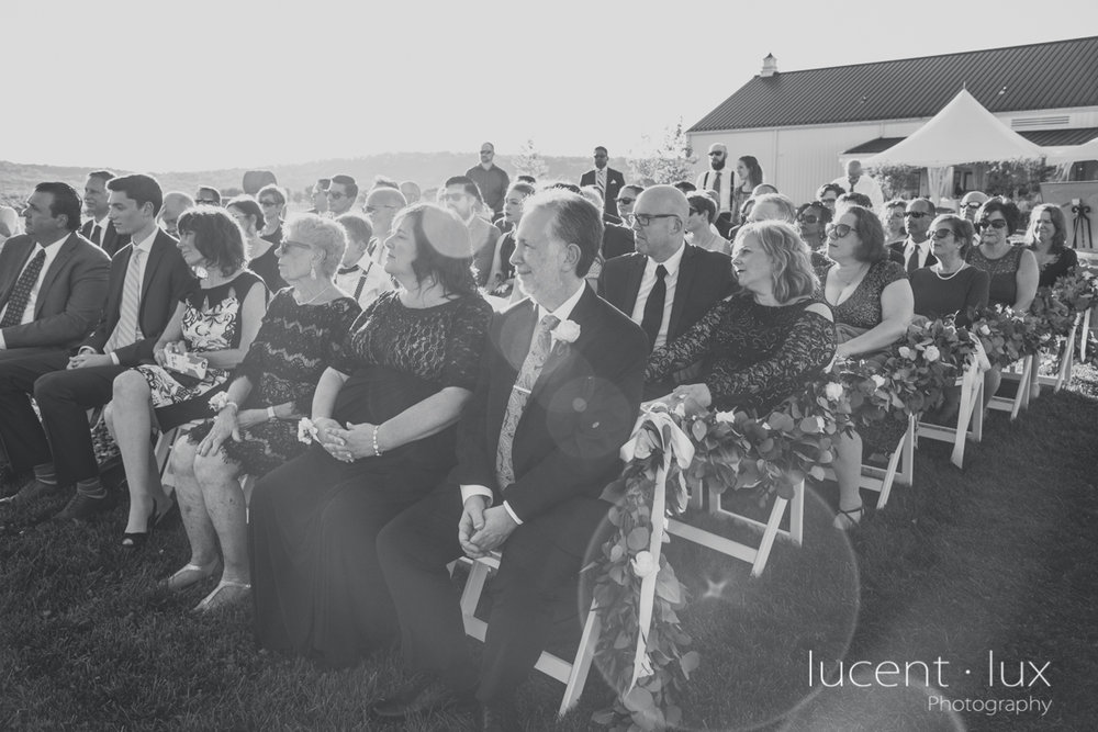 Maryland_Wedding_Photographer_Big_Cork_Vineyards_Wedding_Pennsylvania_Photography-247.jpg