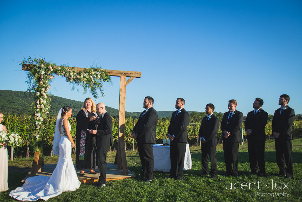 Maryland_Wedding_Photographer_Big_Cork_Vineyards_Wedding_Pennsylvania_Photography-249.jpg