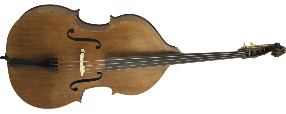 Double bass plain.jpg