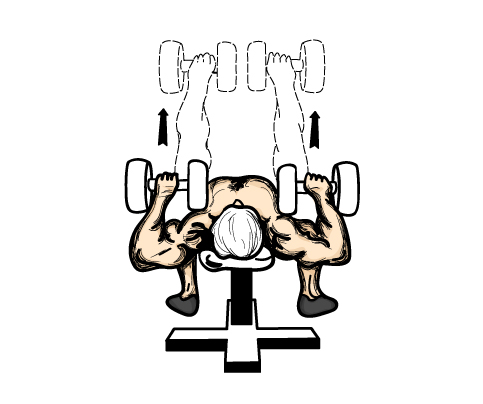 dumbbellpress1