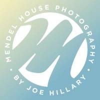 mendel house.jpg