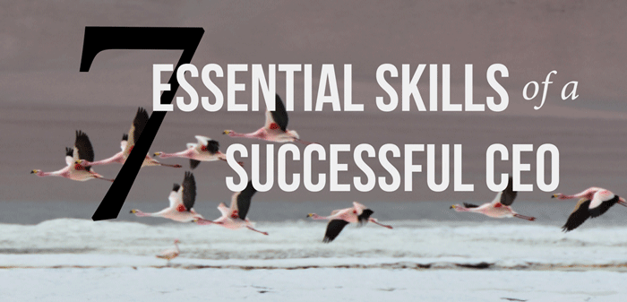 Seven-essential-skills-of-a-successful-CEO
