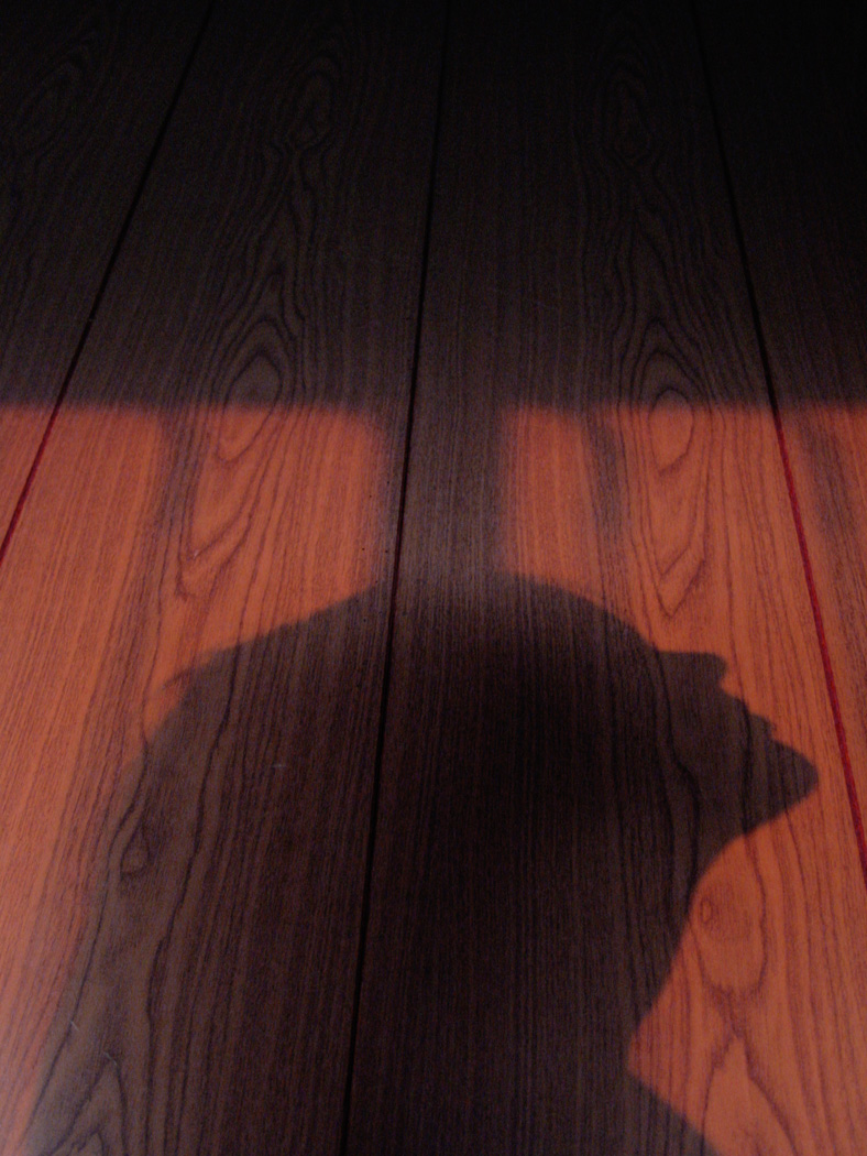 JapanShadow.jpg