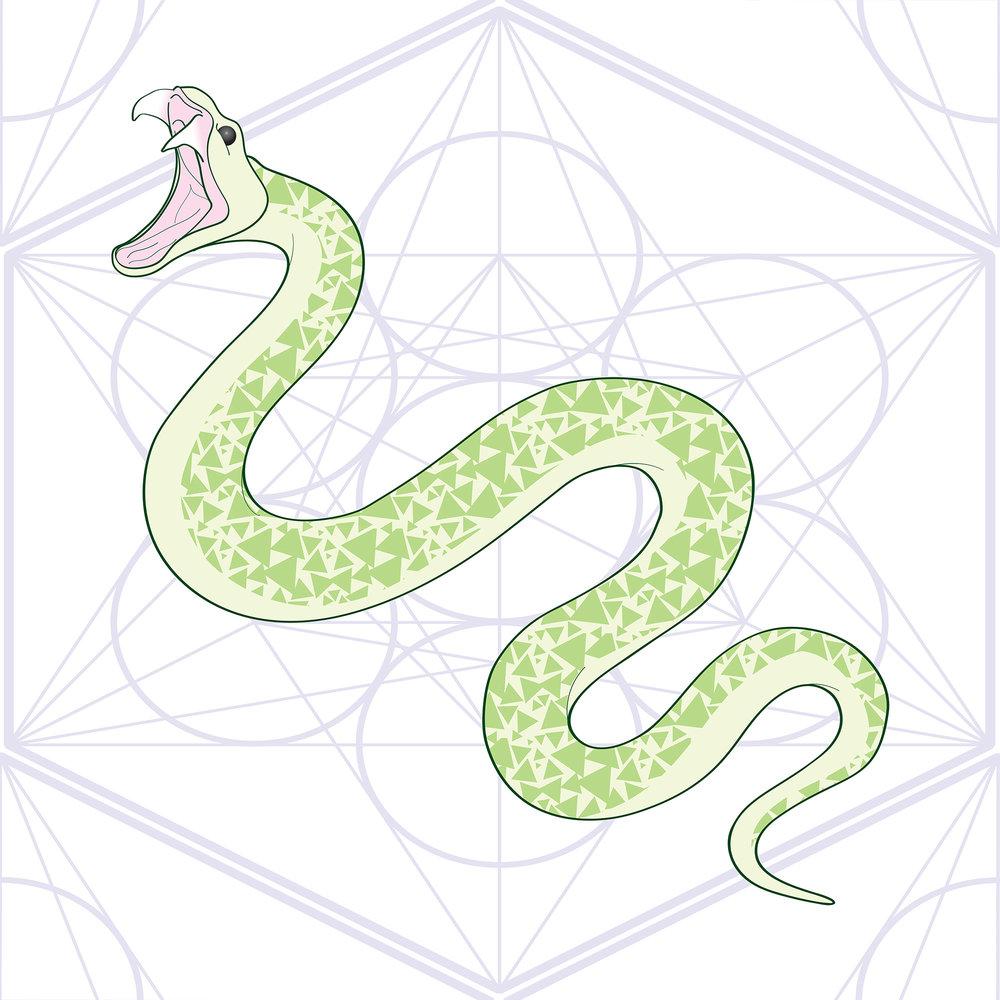Snake_Pattern_sm.jpg