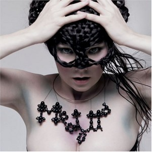 Medulla Hair Mask for Bjork