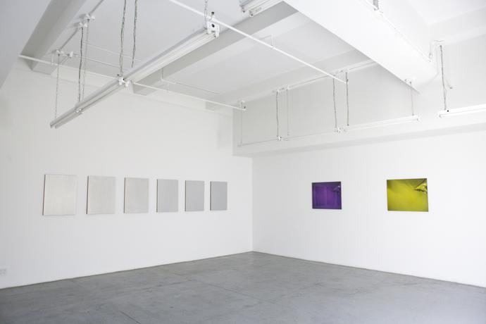 WHAT'S NEW IS NEW AGAIN - Dan Flavin, Louise Lawler and Sherrie Levine  http://www.marcjancou.com/exhibitions/whatand39s-new-is-new-again/selected-works/2