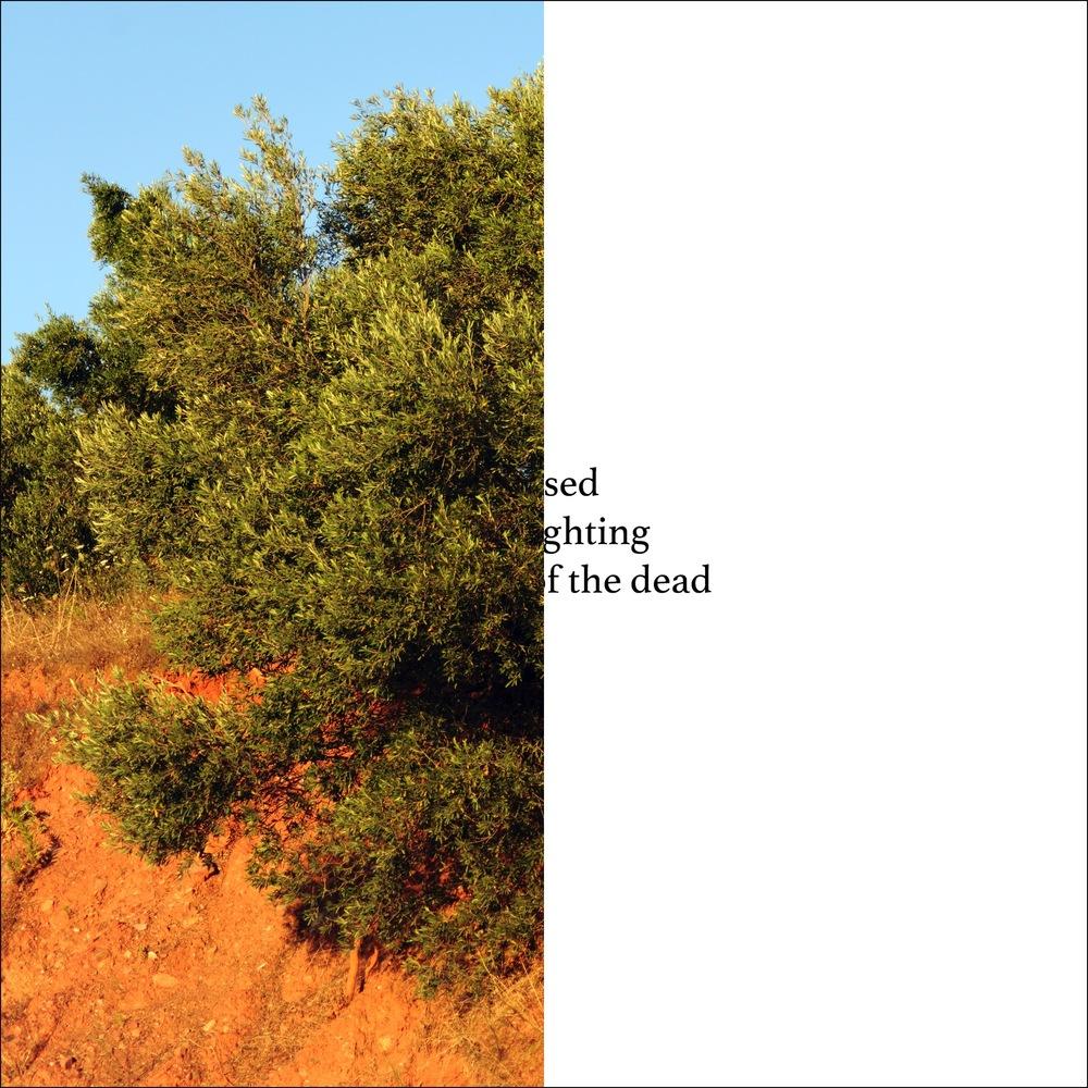 Slide024.jpg