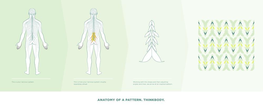 nerves diagram-1_web.jpg