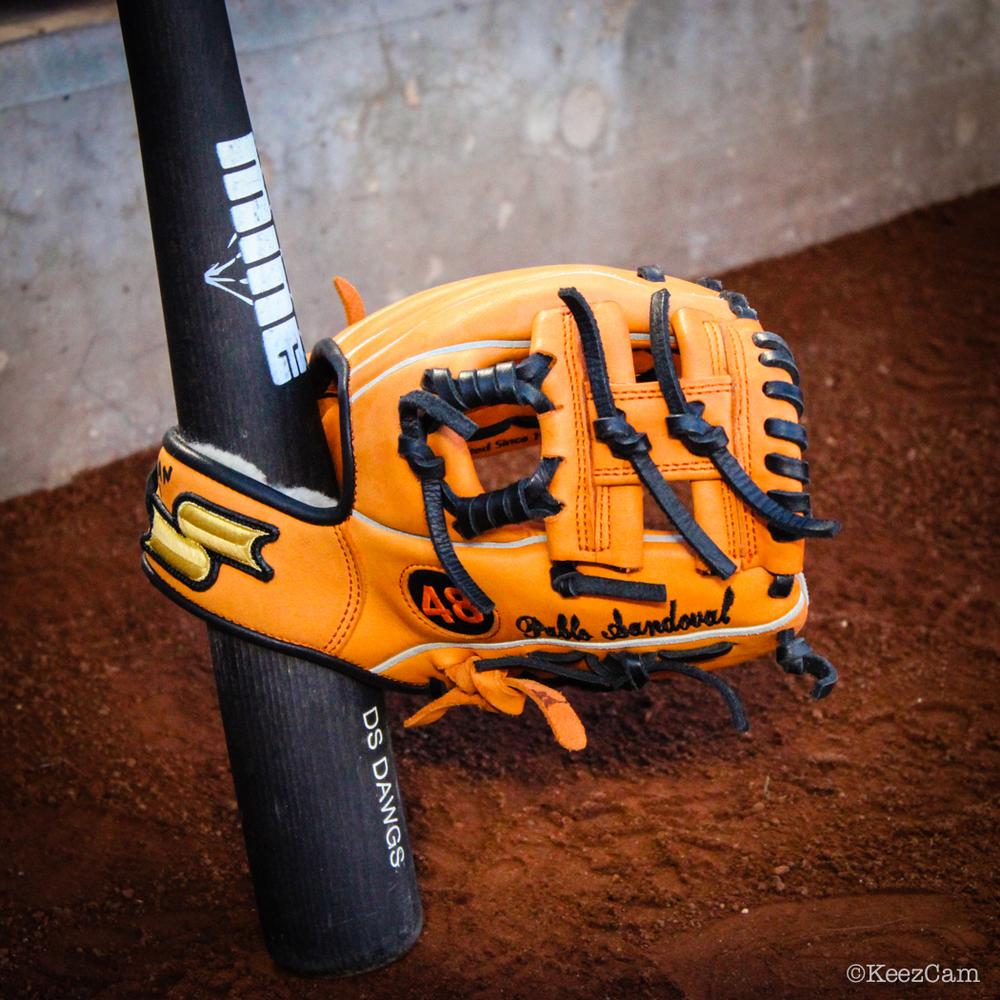 Pablo Sandoval glove