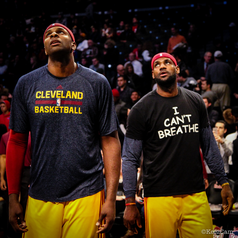 Brendan Haywood & LeBron James