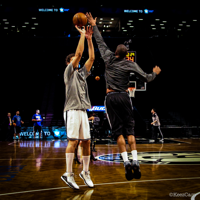 Brook Lopez & Alan Anderson