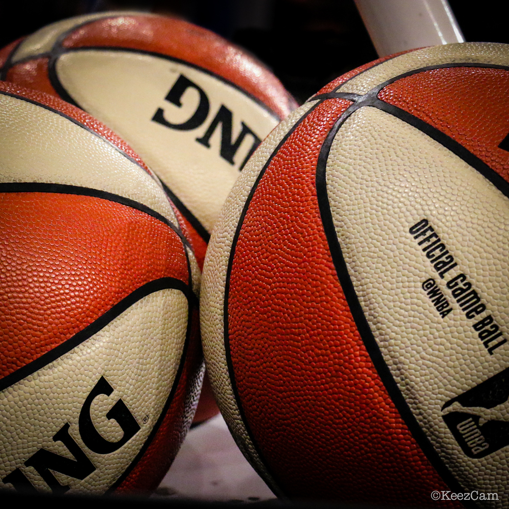 WNBA Basketballs