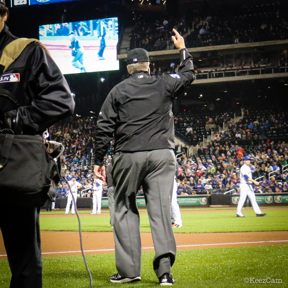 Umpires homerun call