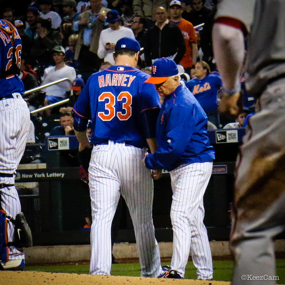 Matt Harvey & Terry Collins
