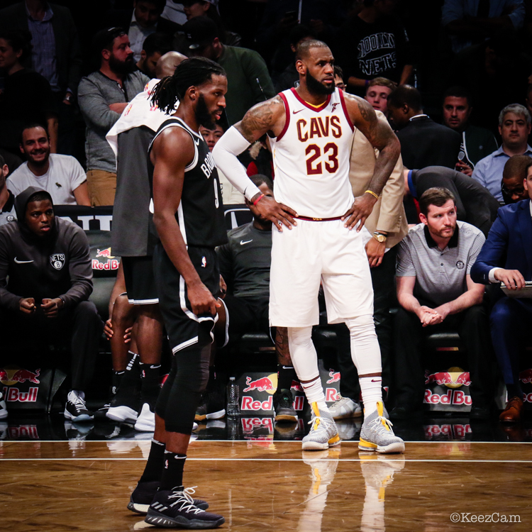 DeMarre Carroll & LeBron James