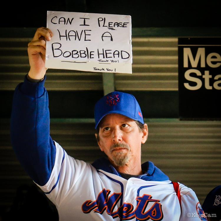 New York Mets Fan